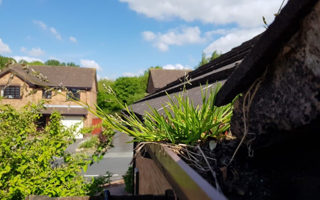 Why hot weather is hard on your gutters