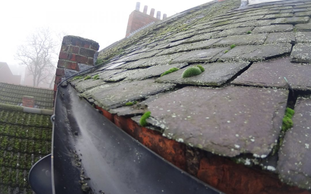 Gutter Clearing – How High can you reach?